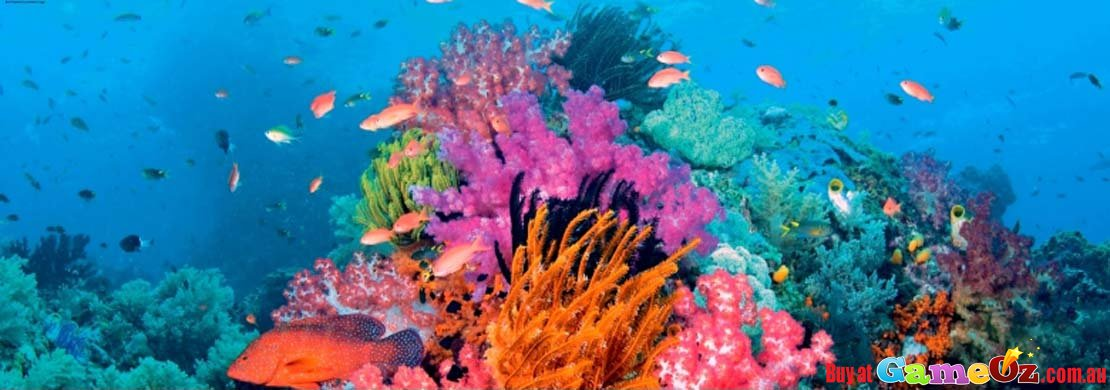 Coral Reef Panorama Heye Jigsaw Puzzle 2000pc