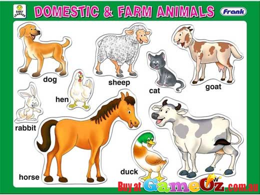 essays on pet animals for kids Kids who want to be veterinarians can reading books on animals can this can be accomplished by giving them specific responsibilities with family pets.